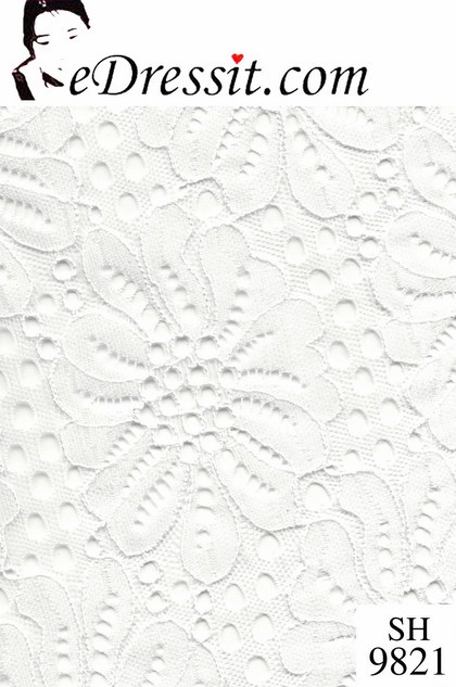eDressit Tissu de dentelles (SH9821)
