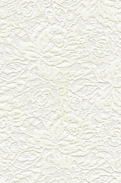 eDressit Lace Fabric (60140117)