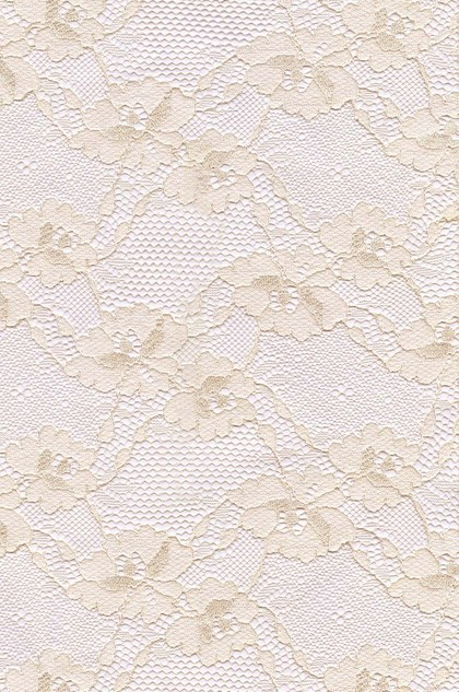 eDressit Lace Fabric (60140164)