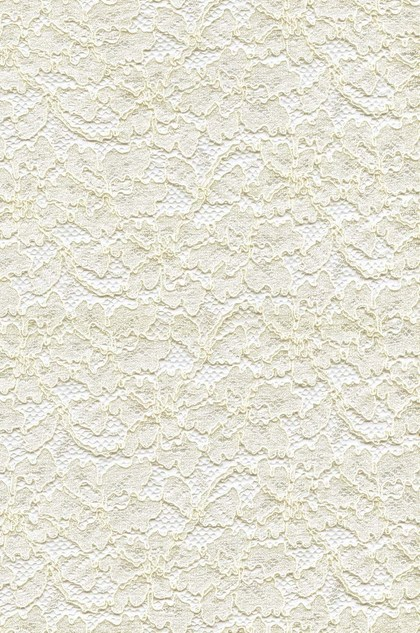 eDressit Tissu de dentelles (60140116)