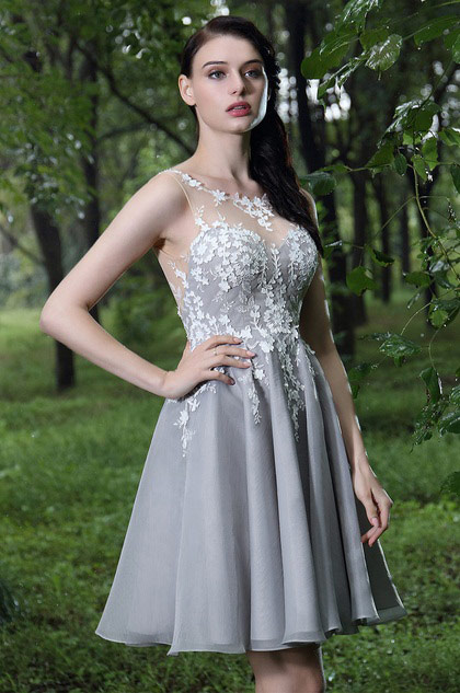 eDressit Grey Party Cocktail Dress with Lace Appliques (04170208)