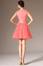 eDressit 2014 New Lace Top Above-knee Length Dress (04141657)