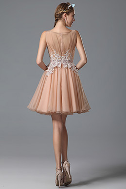 Flattering Sleeveless Lace Applique Cocktail Dress Party Dress (04150701)