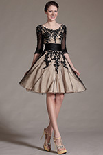 eDressit 2014 New Black Lace Decoration Cocktail Dress Party Dress (04143414)