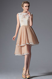 Lovely Stylish Top Lace Asymmetric Cocktail Dress Party Dress (04144314)