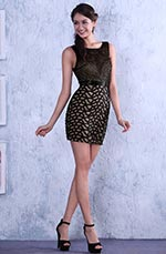 Hot Little Black Sleeveless Cocktail Dress Party Dress Day Dress (C36143200)
