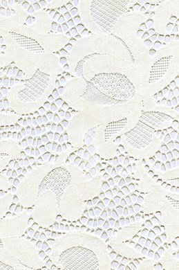 eDressit Lace Fabric (60140115)