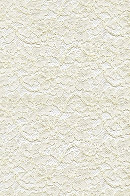 eDressit Lace Fabric (60140116)