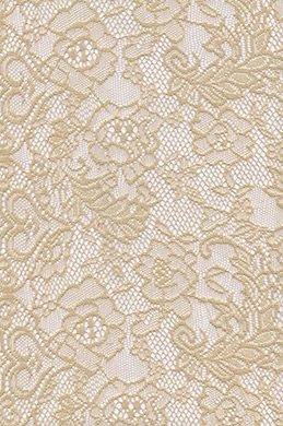 eDressit Lace Fabric (60140153)