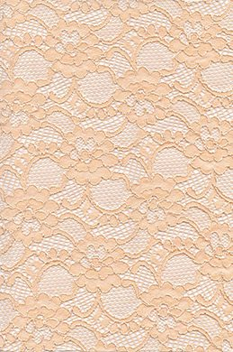 eDressit Lace Fabric (60140198)