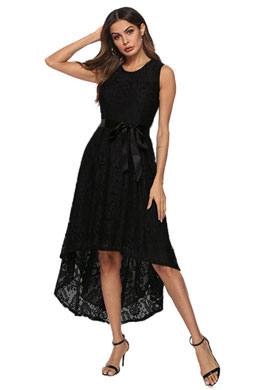 eDressit Classic Simpe Lace Cocktail Dress Women Dress (35197017)
