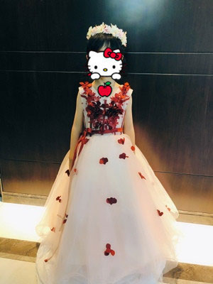 Lovely Ball Gown for Flower Girl
