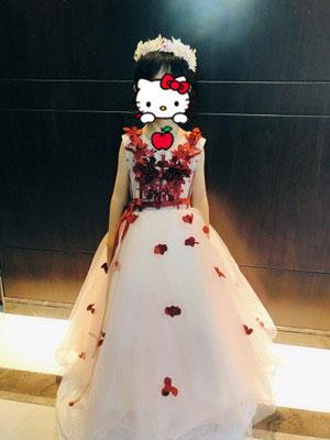 Lovely Ball Gown for Flower Girl