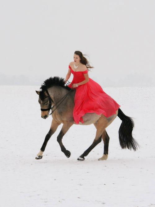 Schulterfrei Rot Abendkleid Brautjungfer Kleid