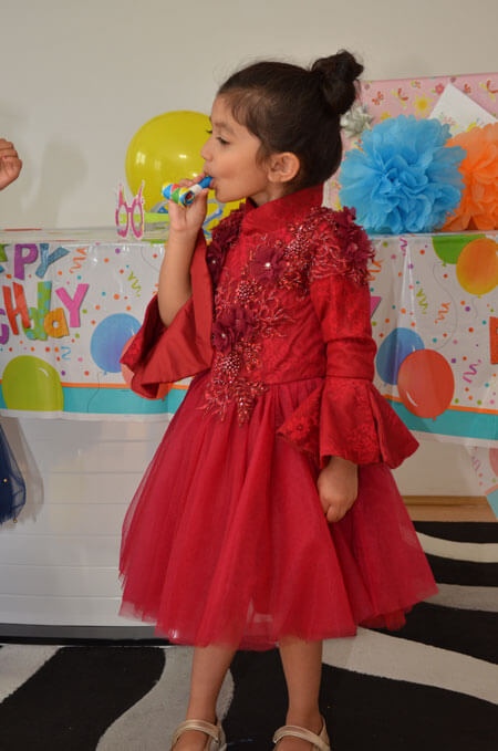 Long Sleeves Red Flower Girl Dress, Birthday Dress